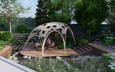 Growing the future at Chelsea Flower Show 2020