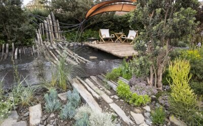 Chelsea Flower Show 2019 Roundup