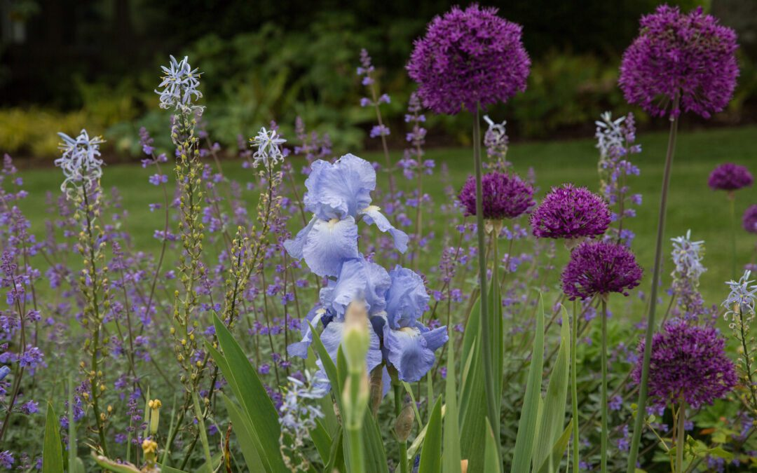 Designing for Sustainable Gardens